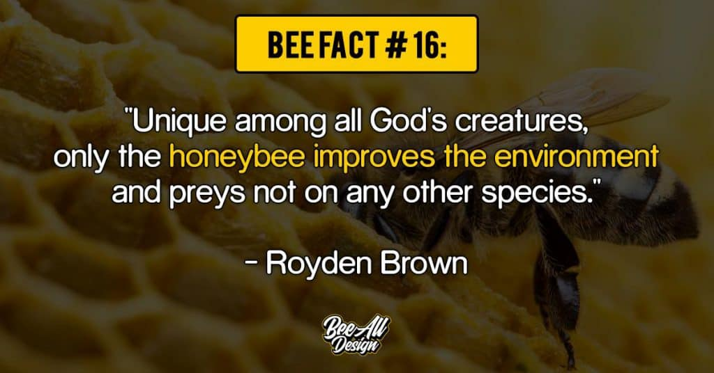 bee facts #16: honeybee improves the environment