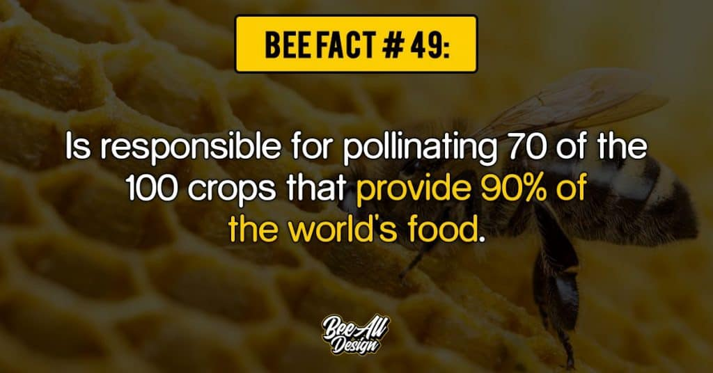 bee fact #49: provide 90% of the world's food