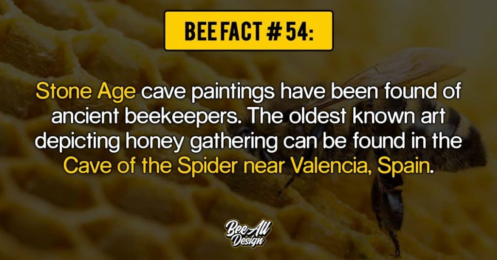 bee fact #54: Cave of the Spider near Valencia, Spain