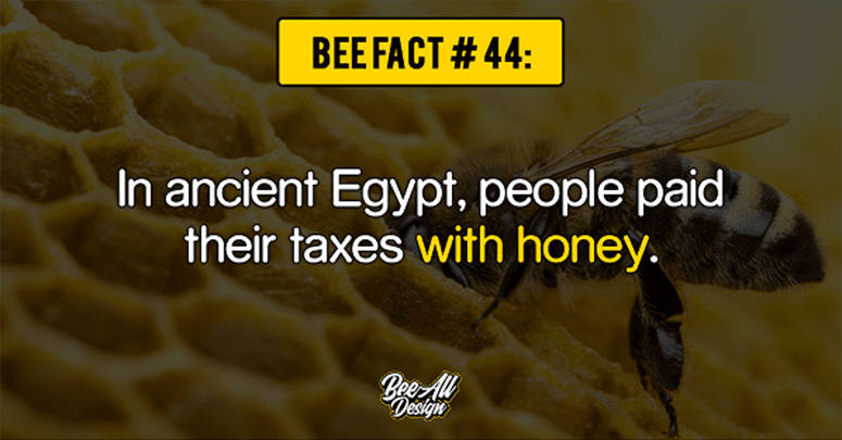 bee fact #44: paid their taxes with honey